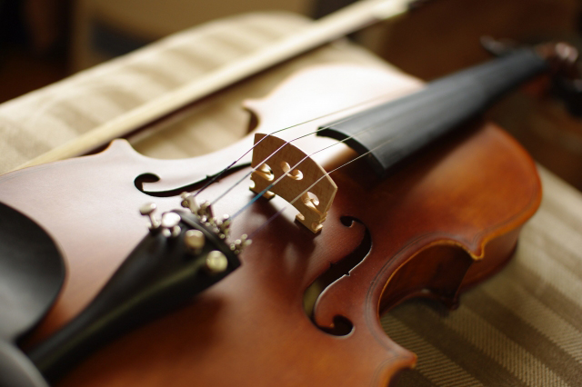 しまったままのヴァイオリン