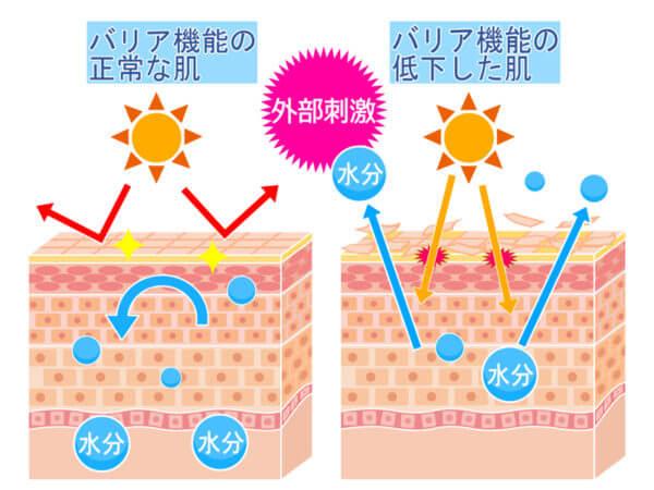 乾燥肌が大敵な理由と解決方法